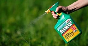 Monsanto Roundup Lawsuit Attorney